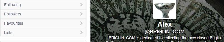 Briglin.com.blog.08